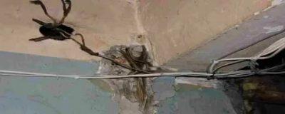Как узнать где проходят провода в стене?